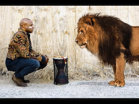Heart of A Lion - Alex Boye'