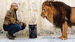 Heart Of A Lion Alex Boye.mp3