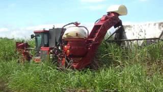 mapex case ih austoft harvester a7700 sugar cane harvester exterior rear view