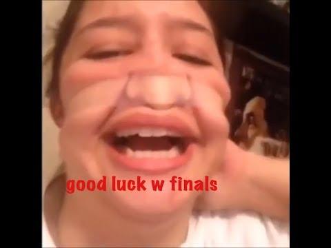 vines to get you thru finals