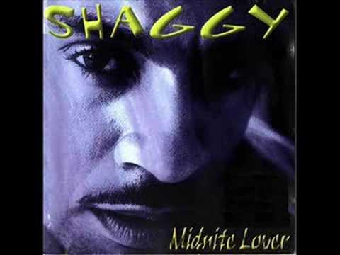 Shaggy Feat. Brian & Tony Gold - Geenie