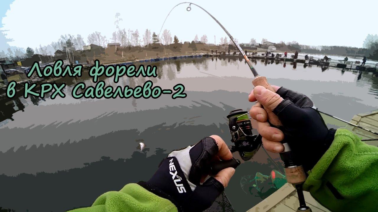 Ловля форели в КРХ Савельево-2 09.04.2016