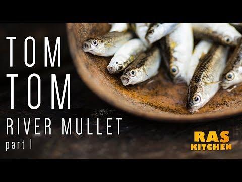 Tom Tom River Mullet Part 1