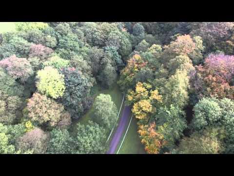 Squire Anderton's Wood, Preston, Lancashire