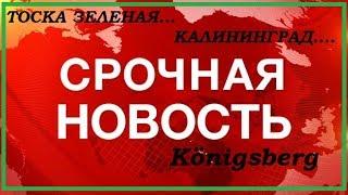 кОП В КАЛИНИНГРАДСКОЙ ОБЛАСТИ 2017 ЛЕТО