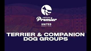 UKC Virtual Premier Total Dog Challenge: Companion & Terrier Groups