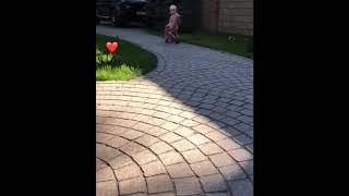 Подросшая дочь Леры Кудрявцевой ездит на беговеле и бормочет, а папа пытается ее остановить