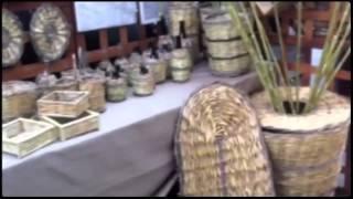 XX^ Sagra del Fungo Cardoncello