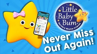 Don't Miss ANY LittleBabyBum Videos Ever Again!