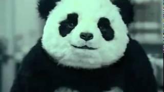 Реклама сыра Panda