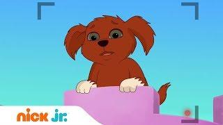 Даша и её друзья | Школа собак 🐕| Nick Jr. Россия