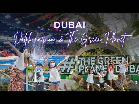 Dubai Dolphinarium and The Green Planet by Krizh Lim