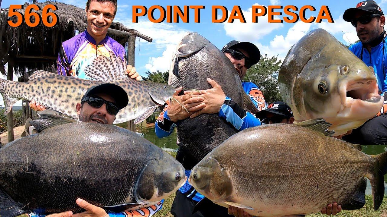 Point da Pesca - Uma explosão nos robôs com os gigantes - Fishingtur na TV 566