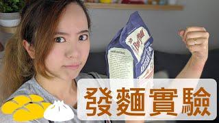 【發酵飲料】「發酵飲料」#發酵飲料,發酵實驗!怎樣發...