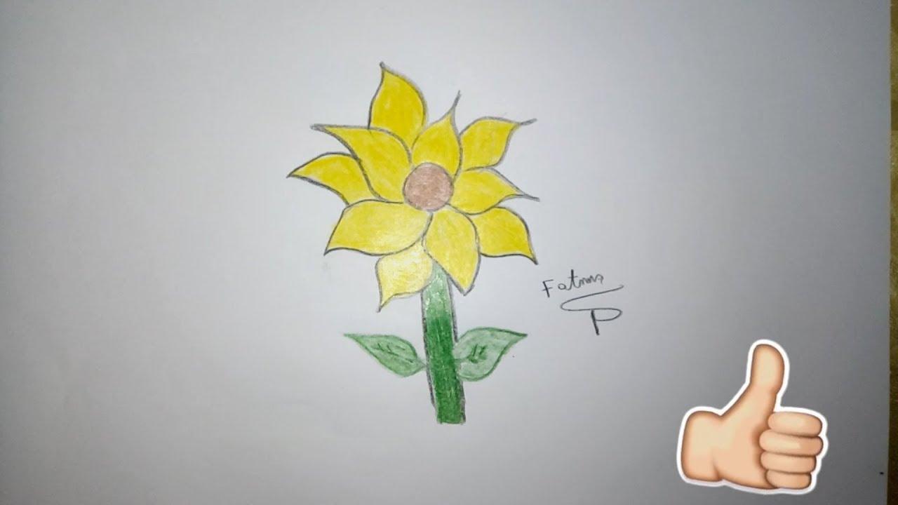 رسم زهرة دوار الشمس بطريقة بسيطة وسهلة جدااااا Youtube