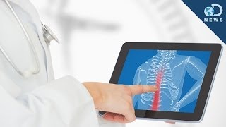 Are We Close To Repairing Spinal Cord Injuries?