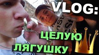 VLOG: Целую ЛЯГУШКУ / Андрей Мартыненко
