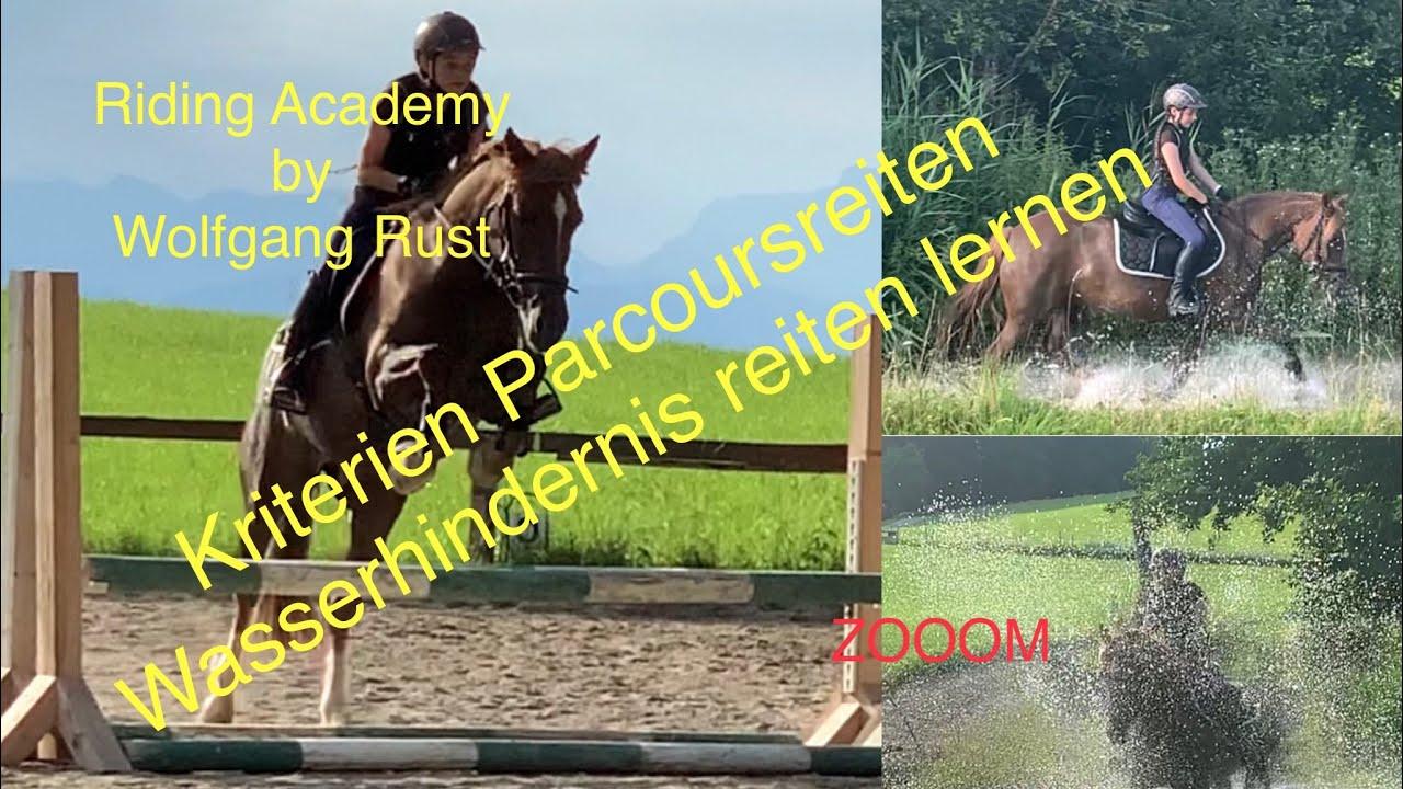 Pony Parcours- und Wassertraining im Gelände, Reiten lernen, Springreiten, Gelände, Springen lernen