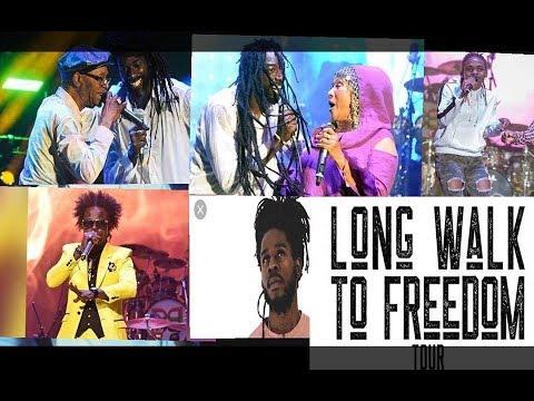 BUJU BANTON - BERES HAMMOND - WAYNE WONDER - MARCIA GRIFFITHS@ LONG WALK TO FREEDOM CONCERT :