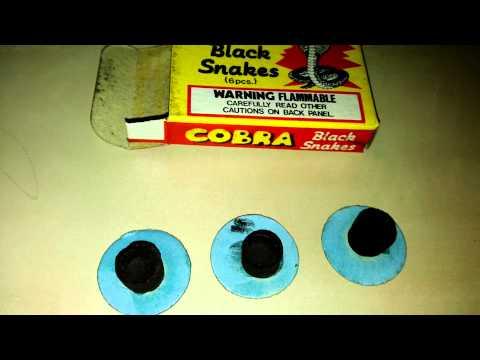 Schlangenhut - Cobra Black Snakes