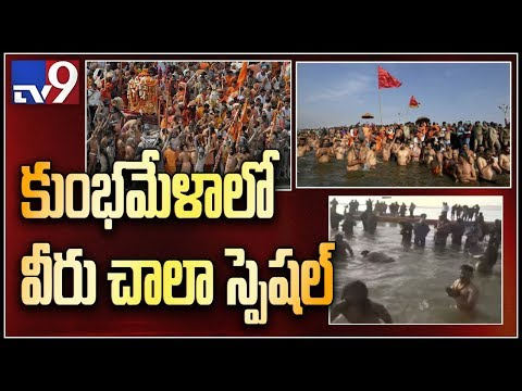 Kumbh Mela : World's largest religious congregation gets underway with Shahi Snan at Prayagraj - TV9