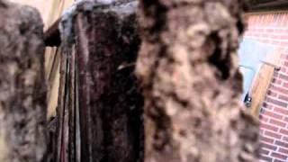 Rainbow Playset Wood Rot Damage