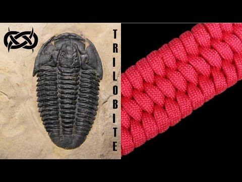 Beginner Paracord How To Make Trilobite Paracord Celet