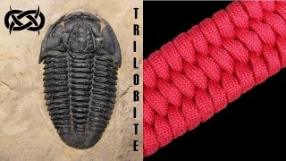 Beginner Paracord: How To Make A Trilobite Paracord Bracelet Tutorial (paracord 101) Tutorial