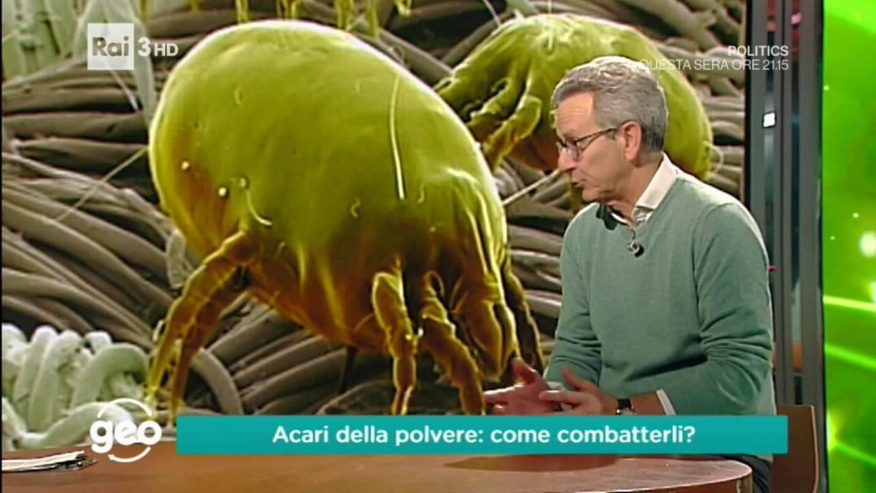 Come Uccidere Acari Della Polvere 9 consigli utili per eliminare gli acari della casa - asma