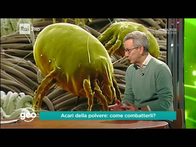 Pulizia Materassi 20267390