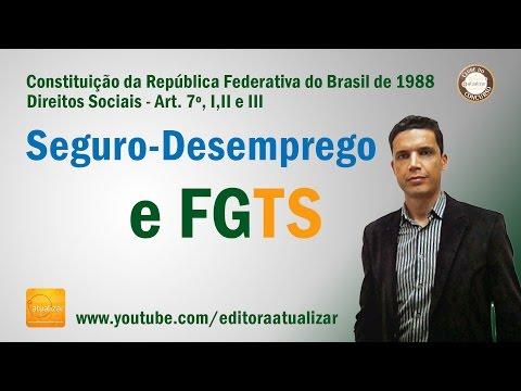 Видео Constituição federal 1988 artigo 7