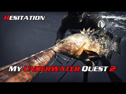 Ilias Zarotiadis - My Underwater Quest 2 - Hesitation (Dusky Grouper) [E02-Q08]