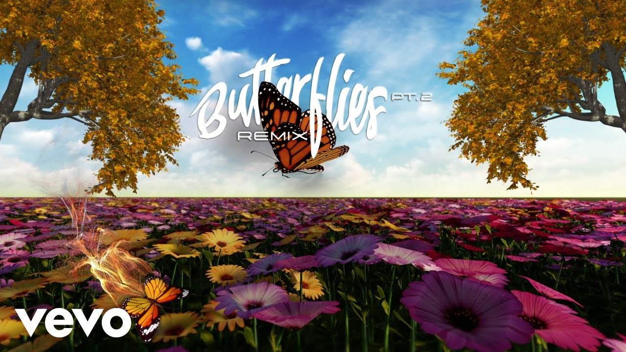 Queen Naija, Wale - Butterflies Pt. 2 (Wale Remix / Visualizer)