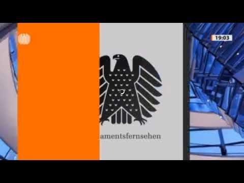 125. Sitzung des Bundestages - AfD-Fraktion im Bundestag