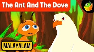 The Ant And The Dove - Aesop