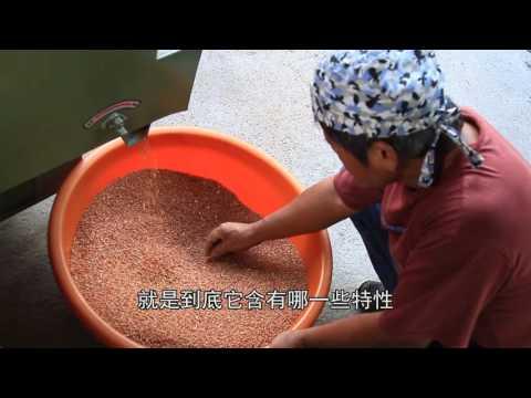 【茶山良食】有機紅糙米 800g (可貨到付款請私訊)
