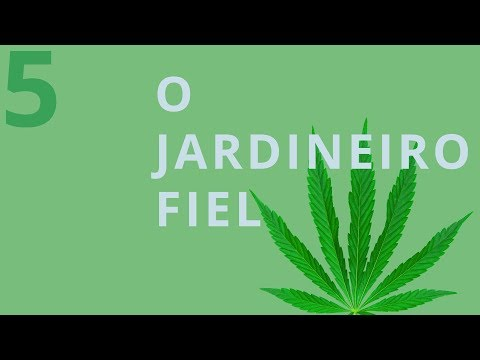O FIEL JARDINEIRO SEXTA À NOITE NA TVI from YouTube · Duration:  31 seconds