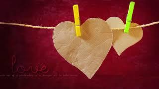 Beautiful Love-Titel Video-Hintergrund    Sauber-Hochzeits-Hintergrund    DMX-HD-BG 296