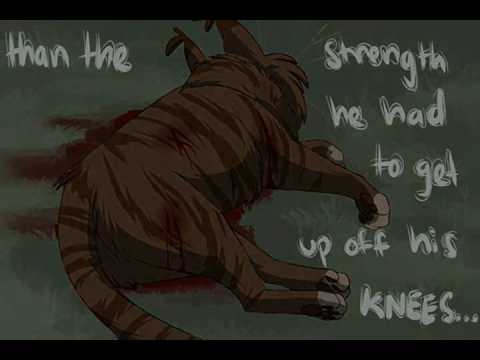 Dustpelt~Whiskey Lullaby
