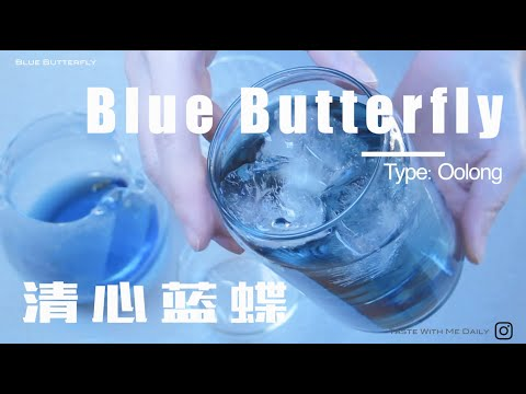 Blue Butterfly Oolong_Daily Tea Taste_[No.11]_【清心蓝蝶乌龙】_Taste With Me Daily[NO MUSIC]