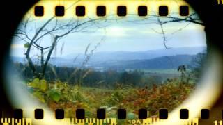 Eigenbau Kamera - Film Scannen - Ergebnisse