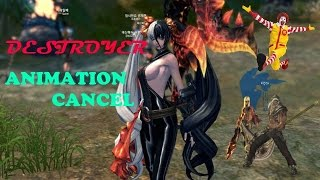 Blade and Soul - BlueCrabIce - Destroyer True Form of Animation Cancel - Explaining