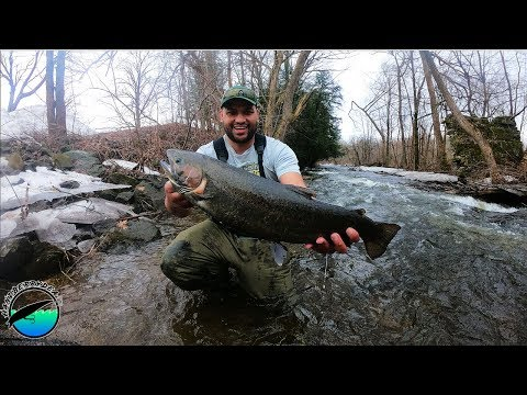 Upstate New York Spring Steelhead Fishing 2019