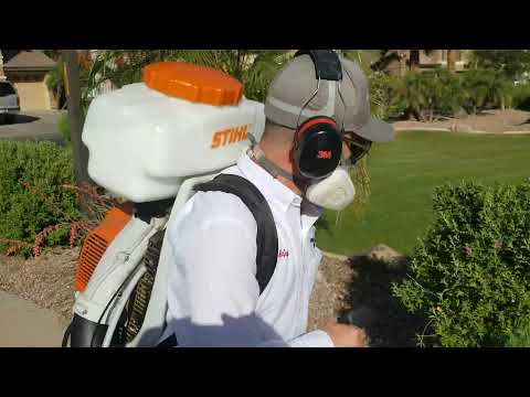 Bug Guardian Pest Prevention Mosquito Control Chandler AZ