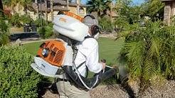 Bug Guardian Pest Prevention Mosquito Control Chandler AZ