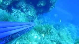 oceanborn highlights Απρίλιος-Αυγουστος 2015