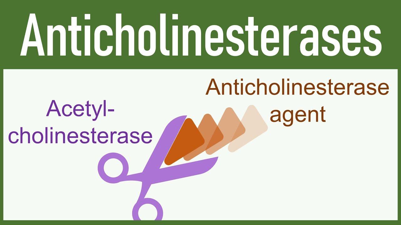 Antikoliiniesteraasi