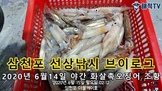 삼천포 야간 화살촉오징어조황 2020년6월14일 [선상…