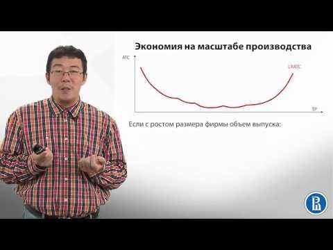 Как определить масштабы деятельности предприятия