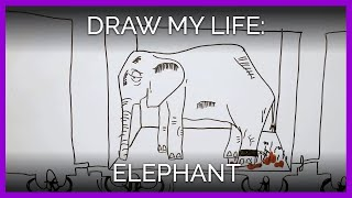Draw My Life: Elephant Edition
